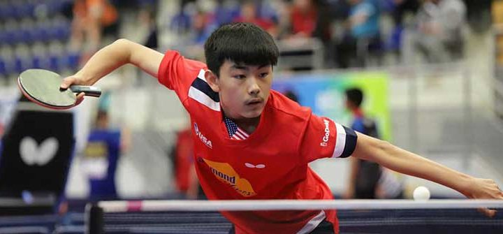 Table Tennis Among the New Sports Betting Favorites