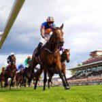 Horse Racing Online Racebook