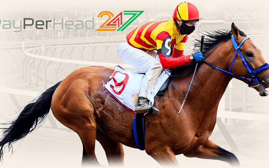 Horse Racing Prices, Things You Must Know